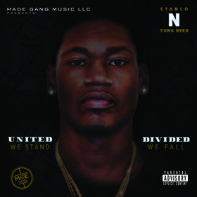 United We Stand Divided We Fall Stanlo N Yung Reed front cover