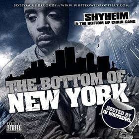 The Bottom Of New York DJ WhiteOwl -  Executive produced By DJ DES Shyheim front cover
