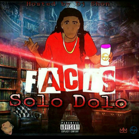 Facts Solo Dolo front cover