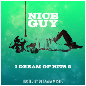 I Dream of Hits 2 Nice Guy front cover