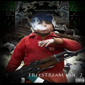 FreeStream Vol. 2 DJ Whirlwindz front cover