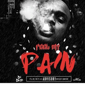 Feel My Pain HotBoy Lil Shaq front cover