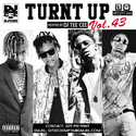 Turnt  Up Vol. 43 DJ Tee Cee front cover