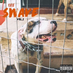 The Swave Vol, 1 FilmswaveBray front cover