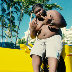 8417 Young Chop front cover