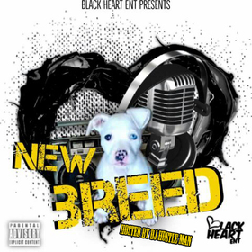 BlackHeart Ent. - New Breed Dj Hustle Man front cover