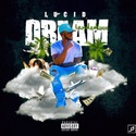Lucid Dreams CHILL iGRIND WILL front cover