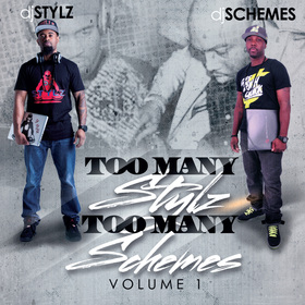 Too Many Stylz Too Many Schemes Vol. 1 DJ Schemes front cover